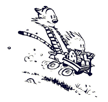 Image result for calvin wagon