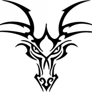 Dragon13