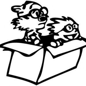 Calvin and Hobbes box 2